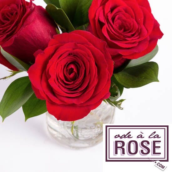 Valentine's Day Special with Ode à la Rose!