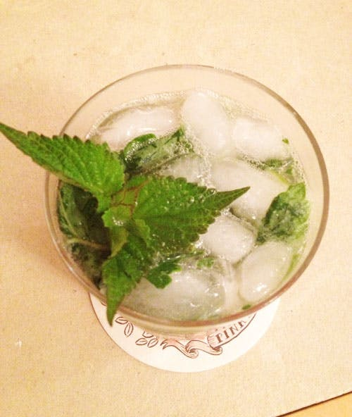 Anise Hyssop Mojitos