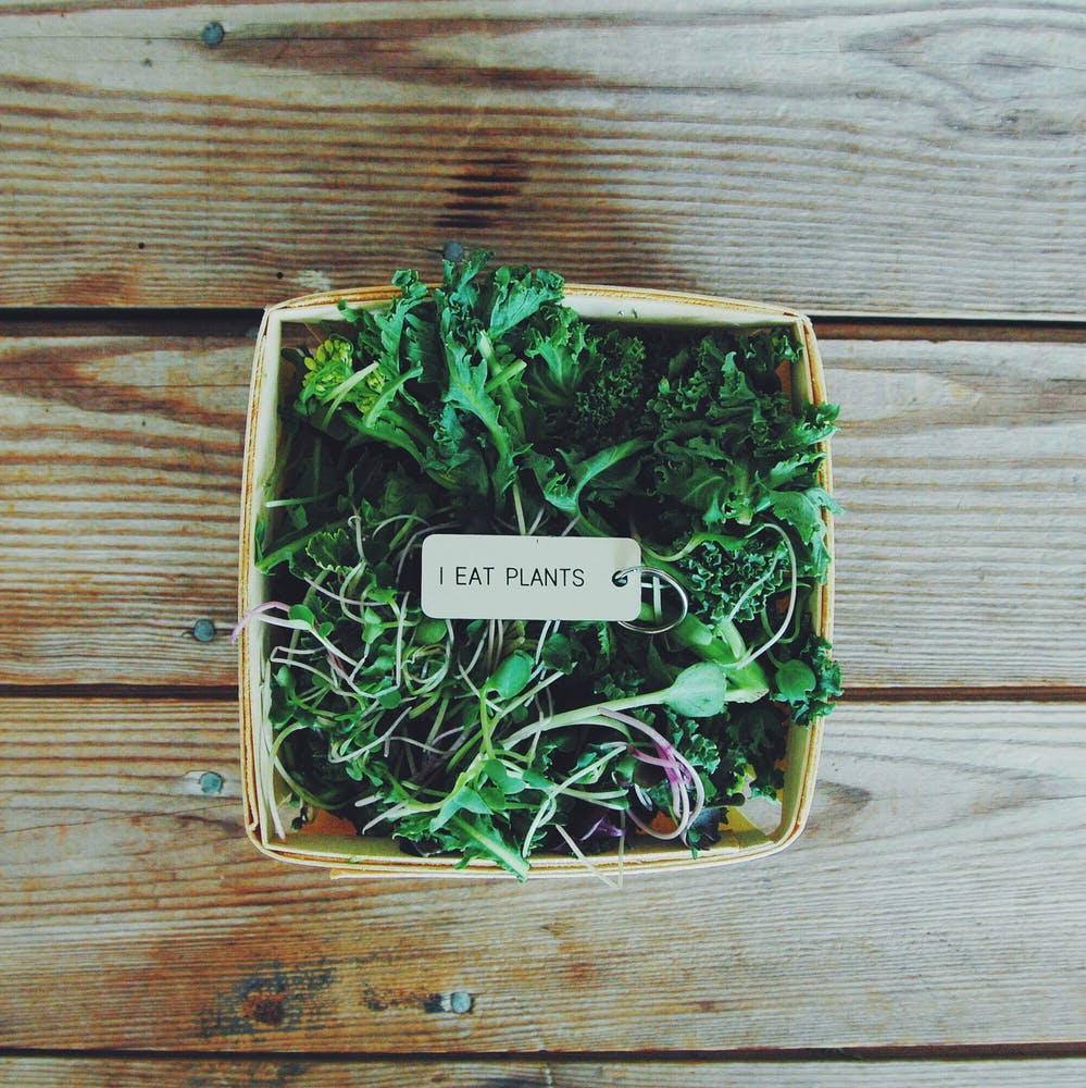 all about microgreens