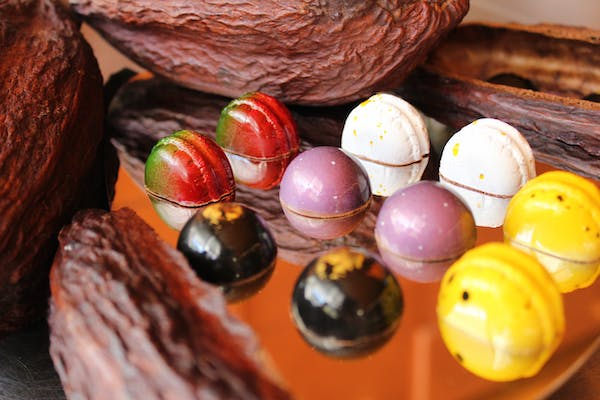 The Feed: Chocolatier Opens in Midtown