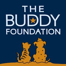 The Buddy Foundation