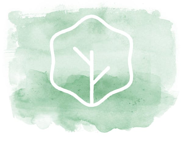Live Salad Logo