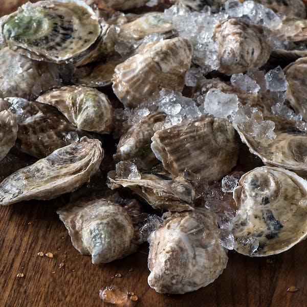 Oyster Week: March 4-10