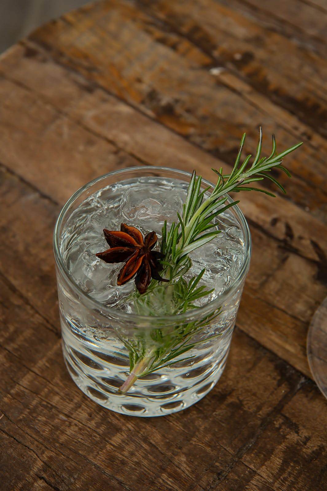 Glass of water with flower and green plant