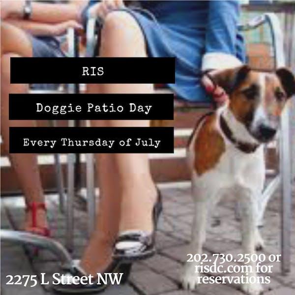 Doggie Patio Thursdays