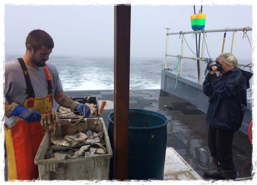 Merritt photographing a lobsterman baiting hooks for fishing.