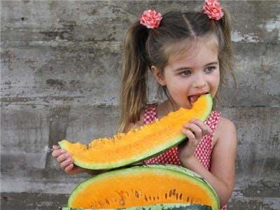 Orangeglo Watermelon 3