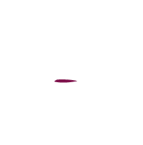 The Hidden Vine Home